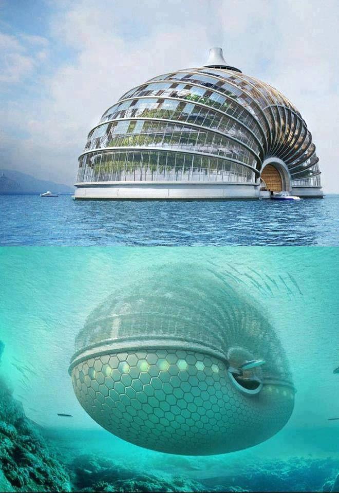 kagylóhotel