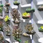 pet palack és pet kupak újrahasznosítás - függőleges kert és virágtartó 10