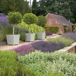 kertépítés moder kert sok sok virág növény és egy kerti tó