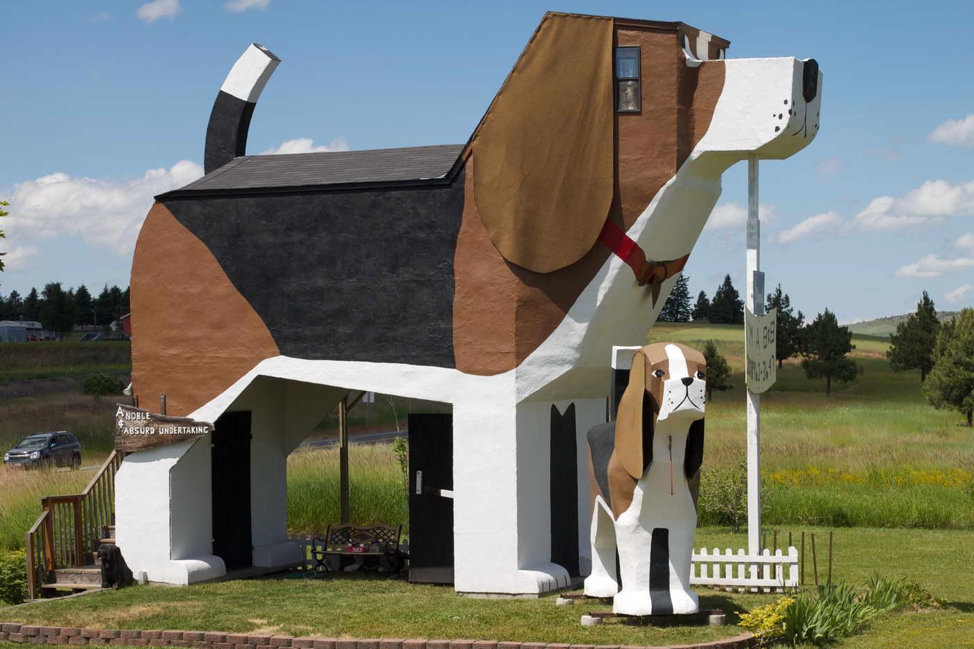 bizarr épület - kutyaház