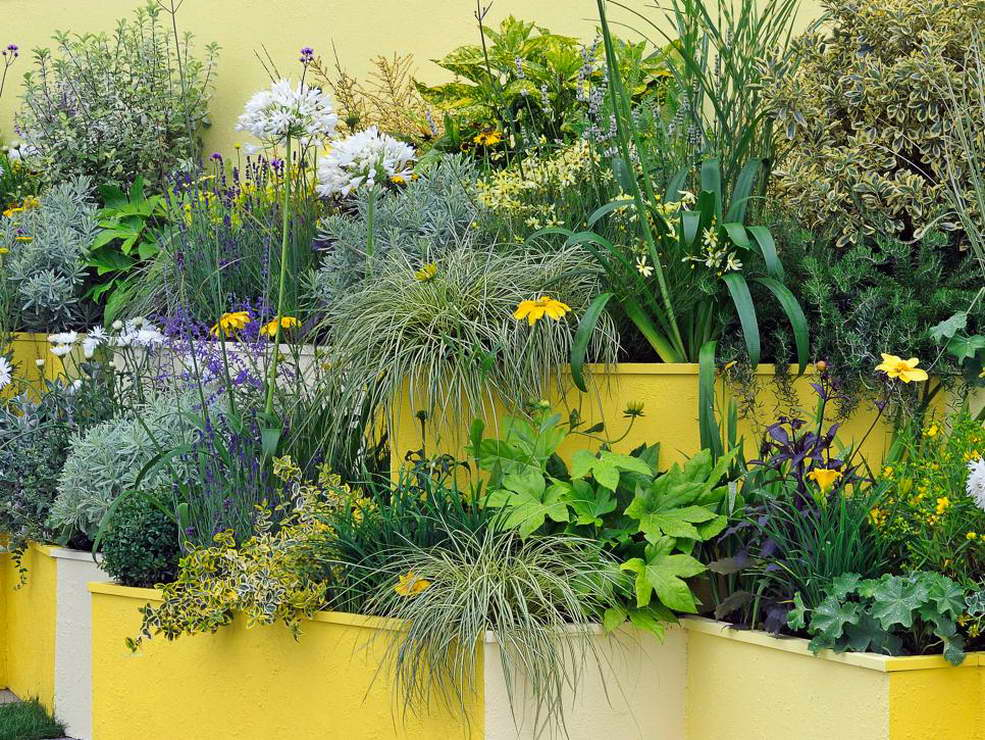 kertépítés ötlet - lépcsős virágágyás