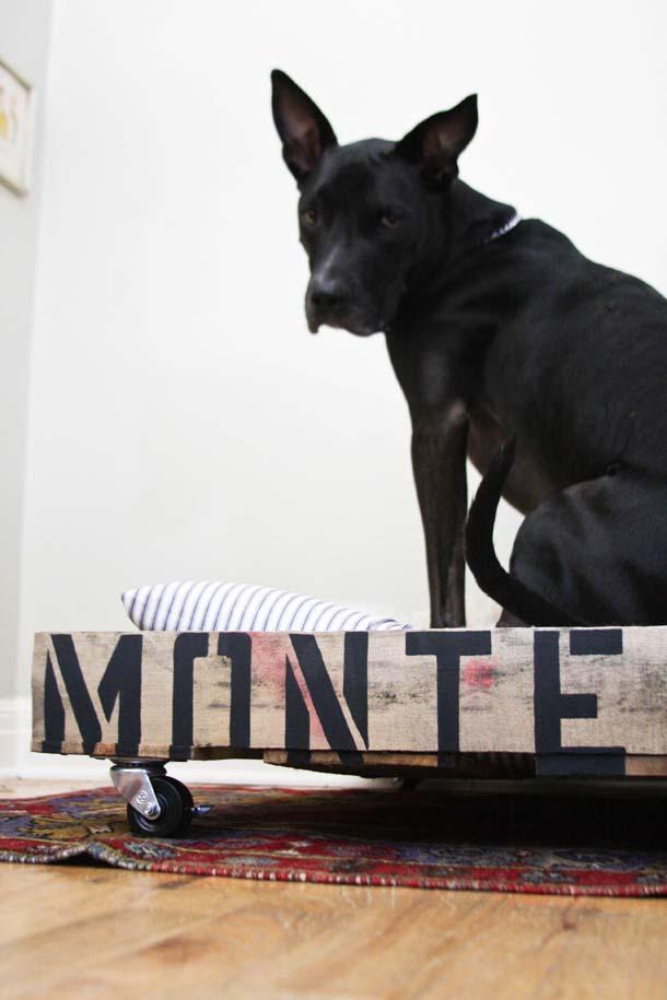 guruló raklap kutya kanapé és fekhely