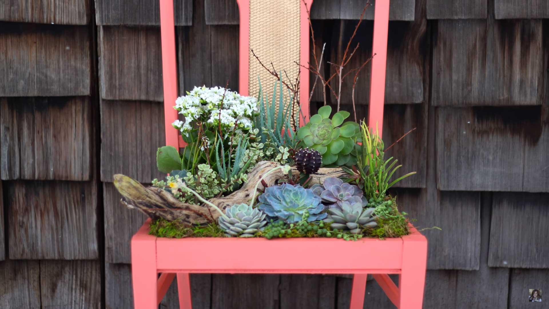 szék virág ágyás, tartó és növény dekoráció