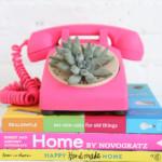telefon növény dekoráció