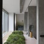 belső kert zöld nappali