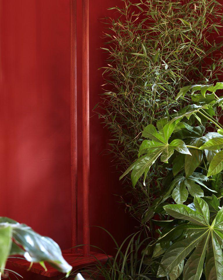 kis nyaraló - mosdó és növények