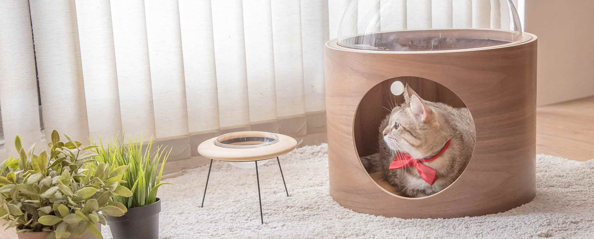 design macska ház - cica ház a földre