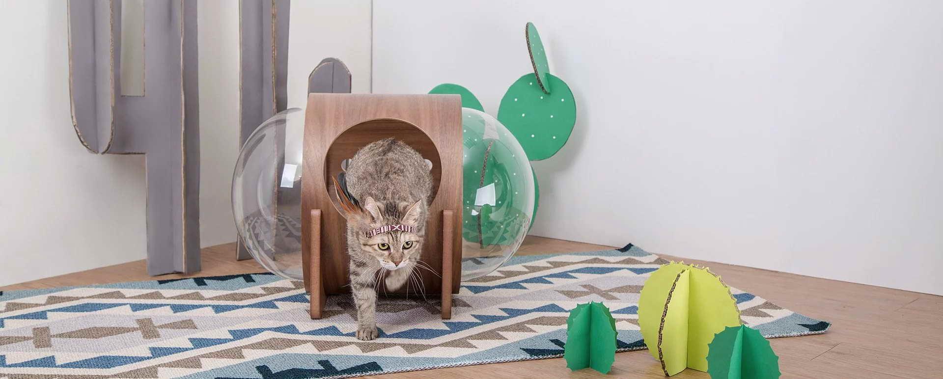 design macska ház - cica űr ház