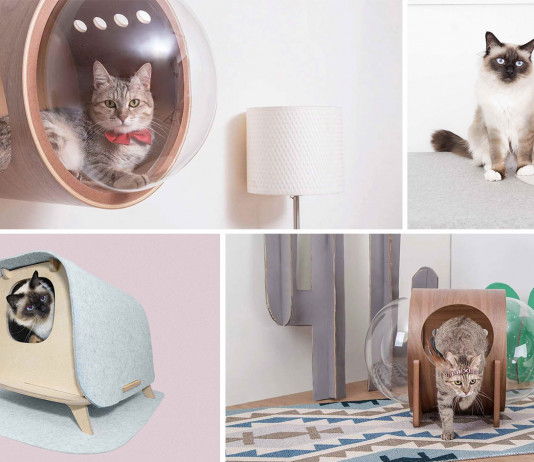 design macska ház - cica ház
